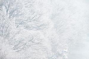 OHT96_jyuhyou_TP_V---コピー